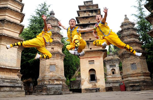 Kung Fu Rive Sud