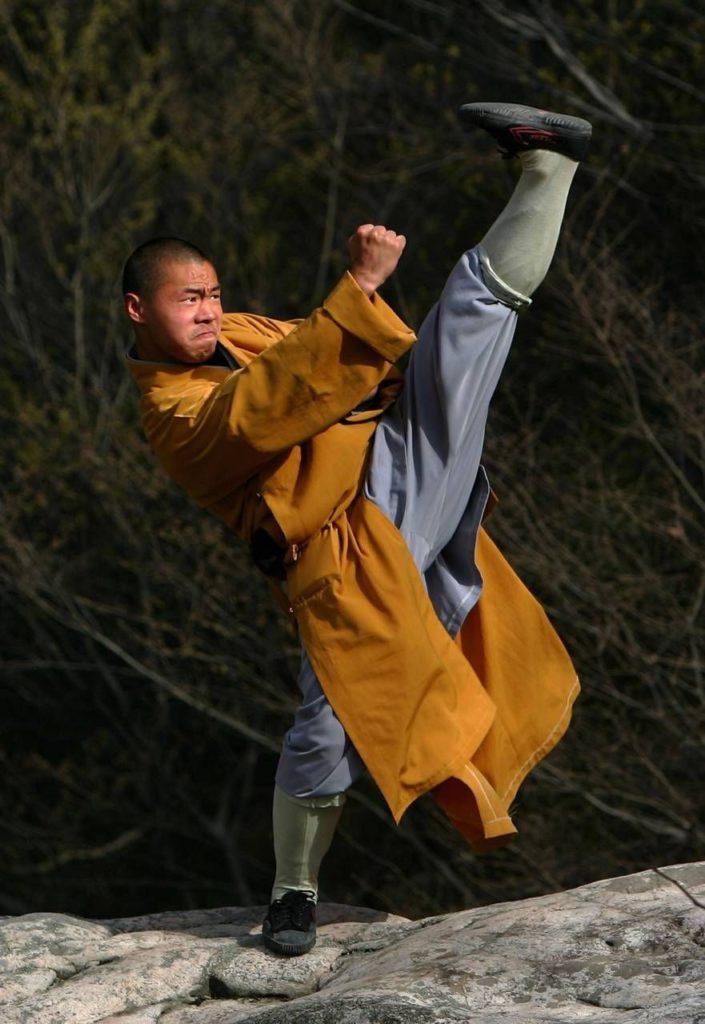 Shaolin Kung Fu rive sud